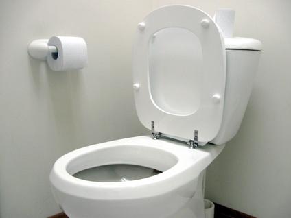 Toiletverstopping